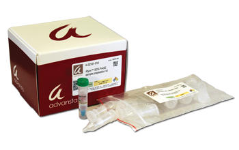 Afyon SDS-PAGE sample preparation kit