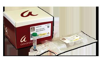 Afyon SDS-PAGE sample preparation kit